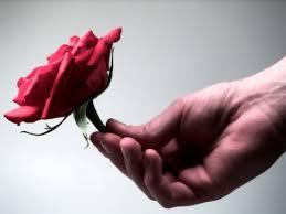 ارتأيتها rose.jpg&h=78&am